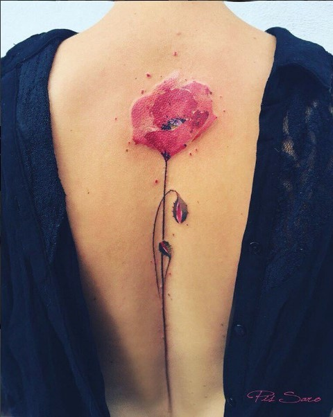 Blog Florystyczny Florystyczna Pasja By Monika Muracka